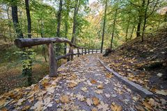 Rotaie di legno nel parco fotografia stock