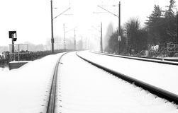Rotaie in neve nebbiosa Fotografia Stock