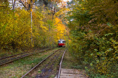 Rotaie rosse del tram sulle curve Immagine Stock