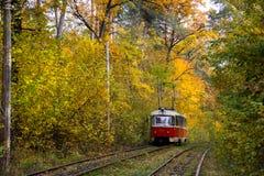 Rotaie rosse del tram sulle curve Fotografia Stock