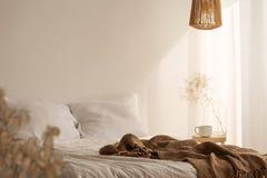 Rotankroonluchter boven het bed van de koningsgrootte met wit beddegoed, echte foto stock fotografie
