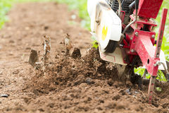 Rotary Cultivator Working In Garden Royalty Free Stock Images