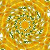 Rotate circle dandelion kaleidoscope spring pattern Stock Images