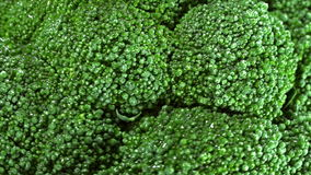 Rotating Broccoli (loopable) stock video footage