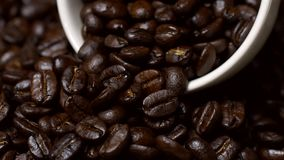 Rotating of coffee beans with coffee cup. 4K stock video footage