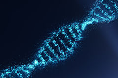 Rotating DNA, Genetic engineering scientific concept, blue tint. 3d rendering. Rotating DNA, Genetic engineering scientific concept, blue tint, 3d rendering Royalty Free Stock Photos