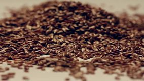 Rotating flaxseeds stock video footage