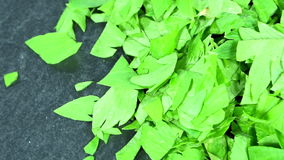 Rotating Lovage (seamless loopable) Stock Photography