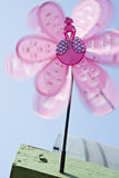 A pink pinwheel. A rotating pink toy pinwheel with a head of peacock Royalty Free Stock Images
