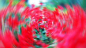 Rotating red blur Stock Photo