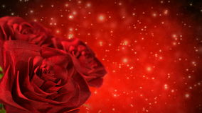Rotating red roses with bokeh particles - 3D render. seamless loop. Rotating red roses with bokeh particles - 3D render, seamless loop stock video footage