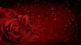 Rotating red roses with glitter particles - 3D render. seamless loop. Rotating red roses with glitter particles - 3D render, seamless loop stock video