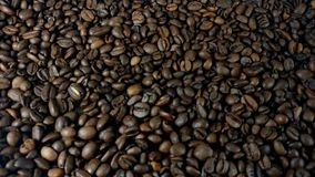 Rotating roasted brown coffee beans stock video