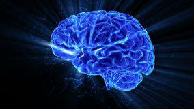 The rotating shining human brain around its axis. stock video footage