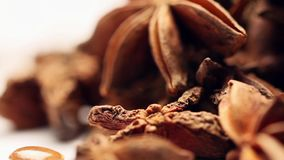 Rotating star anise fruits stock video