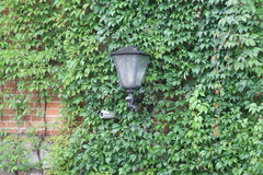 Rotating surveillance camera on brick wall Royalty Free Stock Photos