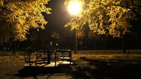 Rotating swing under the night lights with yellow leaves. A creepy scene from the real life stock video footage