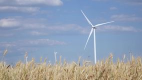 Rotating wind turbines in the field of ripening young wheat. Rotating wind turbines in a field of ripening wheat under a clear blue sky with white clouds stock footage