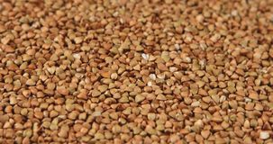 Rotation of the background of whole grains of buckwheat. stock footage