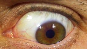 Rotation folle d'oeil du globe oculaire banque de vidéos