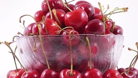 Berries of sweet cherry stock video
