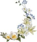 Rotation mit fünf Lilienblumen lizenzfreie abbildung