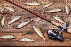 Rotation, poissons et amorces sur le fond en bois Photographie stock libre de droits