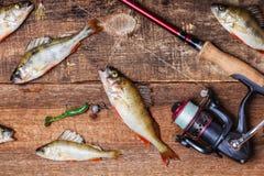 Rotation, poissons et amorces sur le fond en bois Photo stock