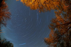 Rotation of the sky around  pole star Stock Photography
