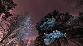 Rotation of stars on a purple sky stock footage