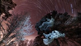 Rotation of stars on a purple sky stock video