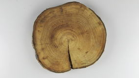 Rotation of a stump with a crack on a white background. View from above stock video footage