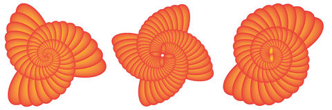 Rotations-Stern Shell Swirl Vector EPS10 Stockbild