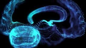 Rotazione dei 360 gradi di cervello umano r Moto di ciclaggio senza cuciture royalty illustrazione gratis