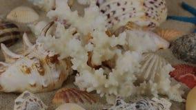 Rotazione di corallo, delle conchiglie e delle stelle di mare che si trovano sulla sabbia Bella priorità bassa del mare video d archivio