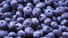 Rotazione organica fresca e matura dei mirtilli Dieta, essendo a dieta, alimento sano del vegano video d archivio