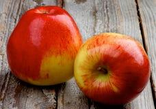 Rote Äpfel Lizenzfreie Stockbilder