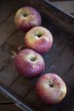 Rote Äpfel Lizenzfreie Stockfotografie