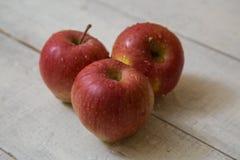Rote Äpfel Lizenzfreie Stockfotos