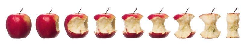 Rote Äpfel in Bewegung Stockbilder
