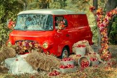 Rote Äpfel in einem Korb Stockfotos