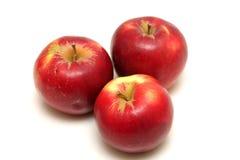 Rote Äpfel getrennt auf Weiß Stockbild