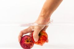 Rote Äpfel im klaren Wasser lizenzfreie stockbilder