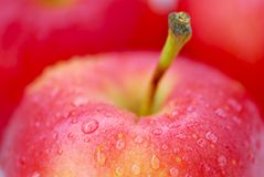 Rote Äpfel Makro stockfotografie