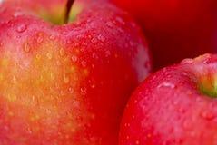 Rote Äpfel Makro stockbilder