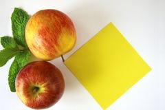 Rote Äpfel mit Blättern der Minze Stockbilder