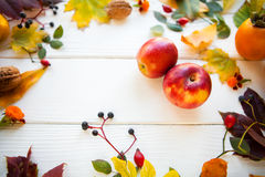 Rote Äpfel und Farbherbstlaub auf einem weißen hölzernen Hintergrund, lizenzfreie stockbilder