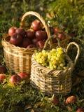 Rote Äpfel und Trauben lizenzfreie stockfotografie