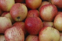 Rote Apfelbeschaffenheit des großen Safts Stockbild