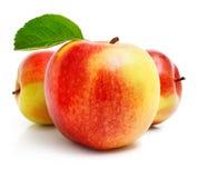 Rote Apfelfrucht mit grünen Blättern Stockbilder